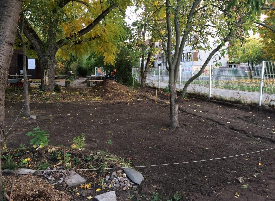 Wirrwuchs, Mitmachgarten, Querbeet Leipzig e.V., Urban gardening, Paunsdorf, Leipzig, Herbst